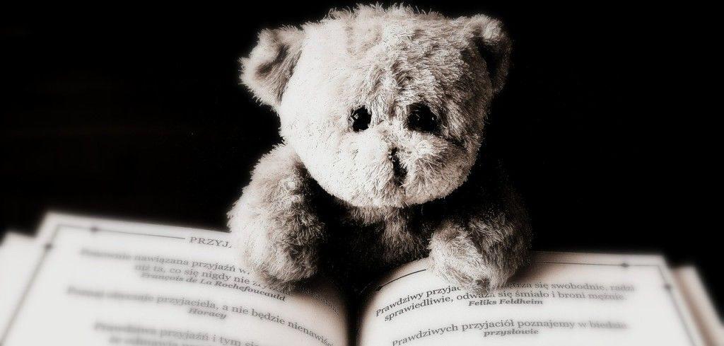 bear-422369_1280-e1475235814618-1024x489