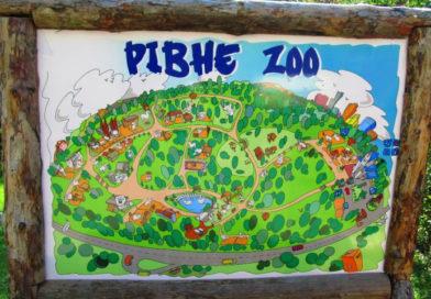 Святкове відкриття 35-сезону в Зоопарку
