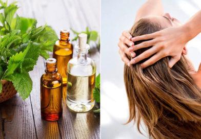 Літня косметика для волосся: поради щодо вибору та купівлі